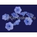 Zorele bleu frosted 20b