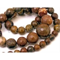 Stripe brown jasper, fatetat, sirag Mm